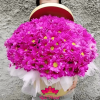 Toko bunga Pekalongan, Flosit Pekalongan, Jual Bunga
