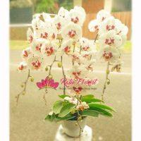Toko bunga Sumedang