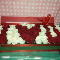 Bunga Box-34
