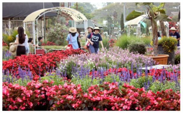 taman bunga di bandung