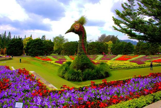 Taman Bunga, Wisata Taman Bunga Di Jawa Barat